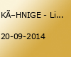 """KÖHNIGE - Live beim  """"LAUT"""" - Open Air 2014"""