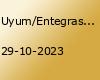 uyumentegrasyonasimilasyon039a-hayir-de